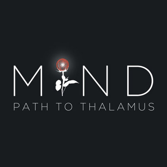心智:视丘之径(MIND: Path to Thalamus Enhanced Edition)